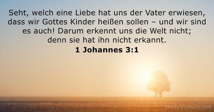 24 Bibelverse über Kinder Dailyversesnet