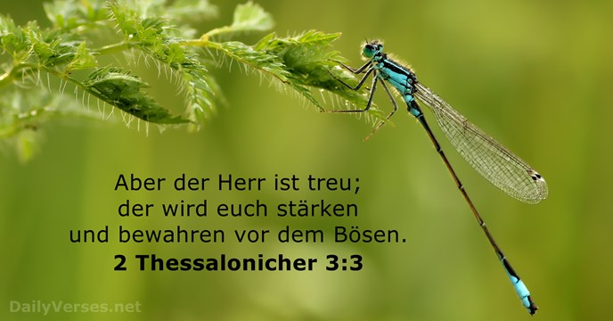 2 Thessalonicher 3:3