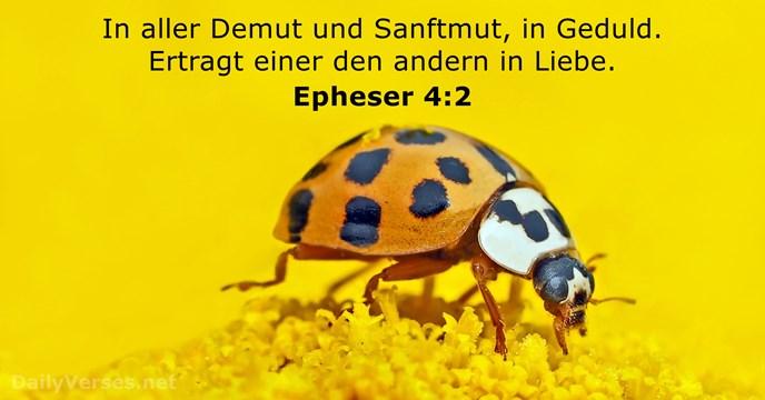 epheser 4:2