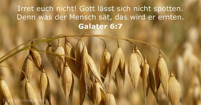 Galater 6:7
