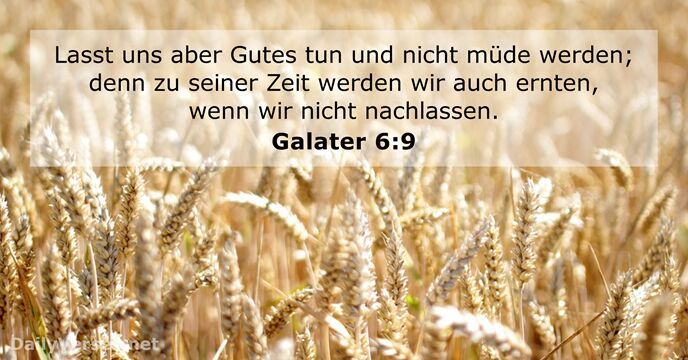 galater 6:9