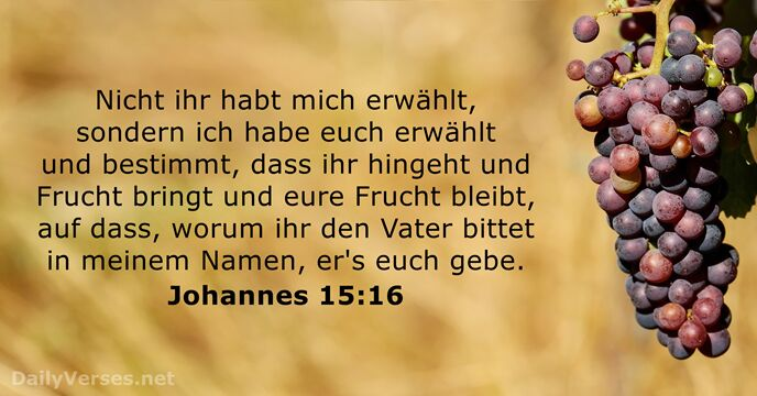 Johannes 6 1 15