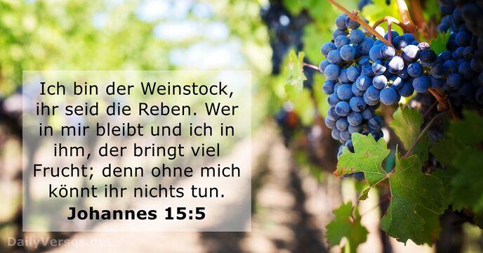 Johannes 15:5