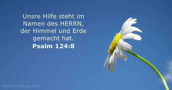 Die Fremdknopf-Bibel Schwarz