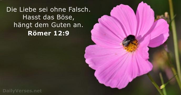 Liebessprüche bibel LIEBE IST