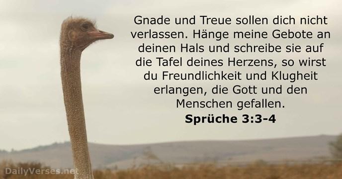 sprüche 3 18. Oktober 2016   Bibelvers des Tages   Sprüche 3:3 4  sprüche 3