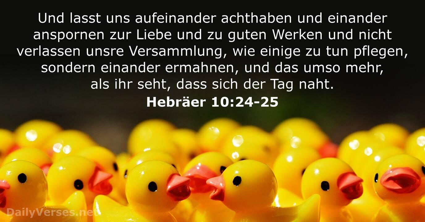 Hebräer 10:24-25 - Bibelvers - DailyVerses.net
