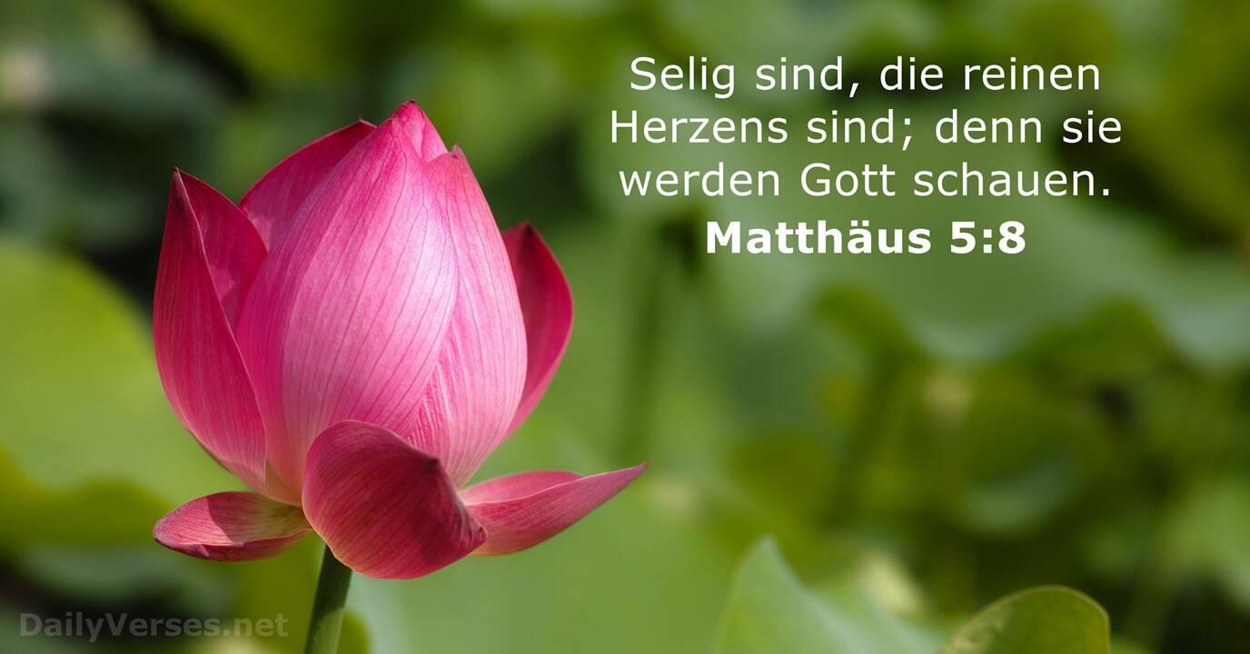 Matthäus 5