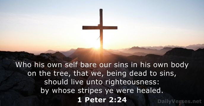 Who his own self bare our sins in his own body on… 1 Peter 2:24