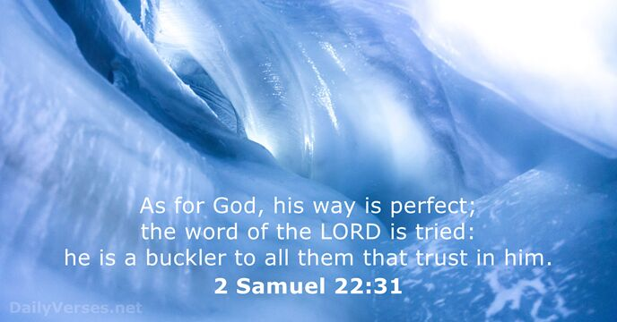 As for God, his way is perfect; the word of the Lord… 2 Samuel 22:31