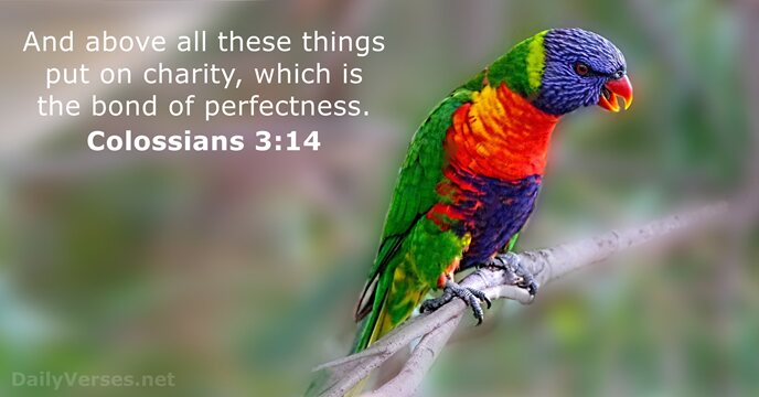 106 Bible Verses about Love - KJV - DailyVerses net