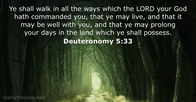 Ye shall walk in all the ways which the Lord your God… Deuteronomy 5:33