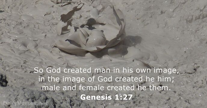 Genesis 1:27 - KJV - Bible verse of the day - DailyVerses.net
