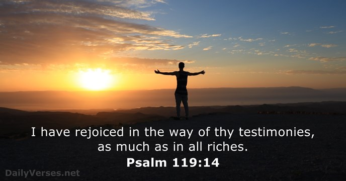 Psalms 119:14