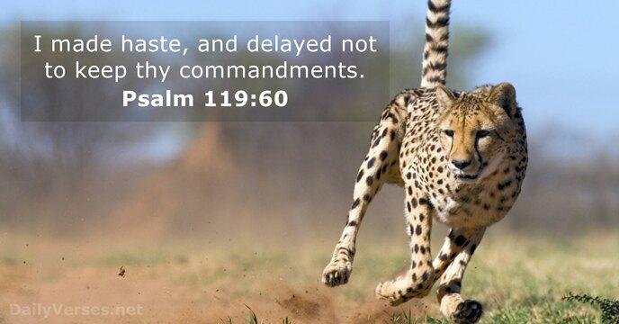 Psalms 119:60