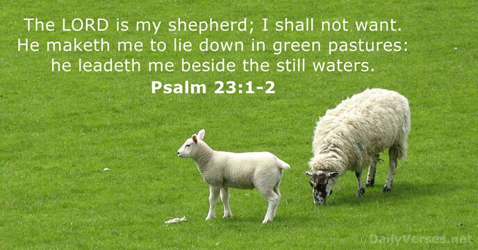 The Lord is my shepherd; I shall not want. He maketh me… Psalm 23:1-2