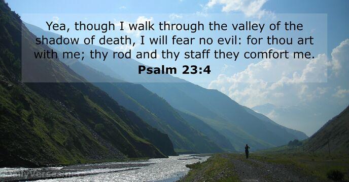 Psalm 23:4 - KJV - Bible verse of the day - DailyVerses.net