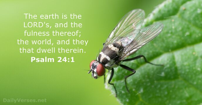 The earth is the Lord's, and the fulness thereof; the world, and… Psalm 24:1