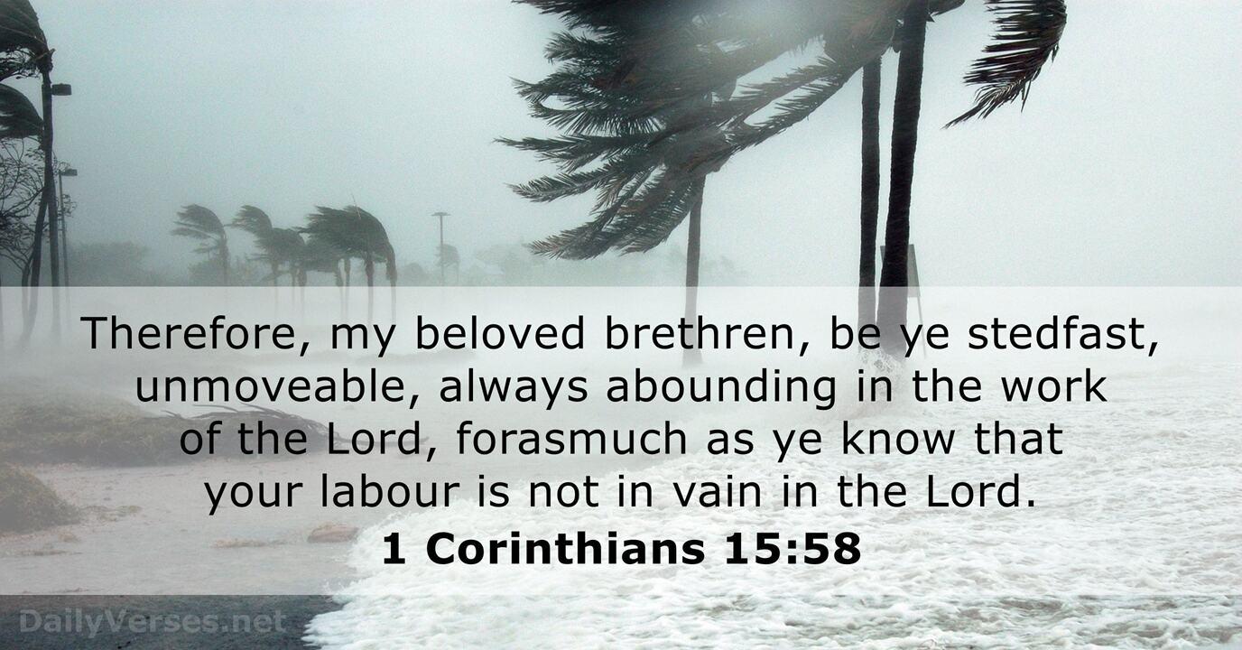 1 Corinthians 15:58 - KJV - Bible verse of the day - DailyVerses.net