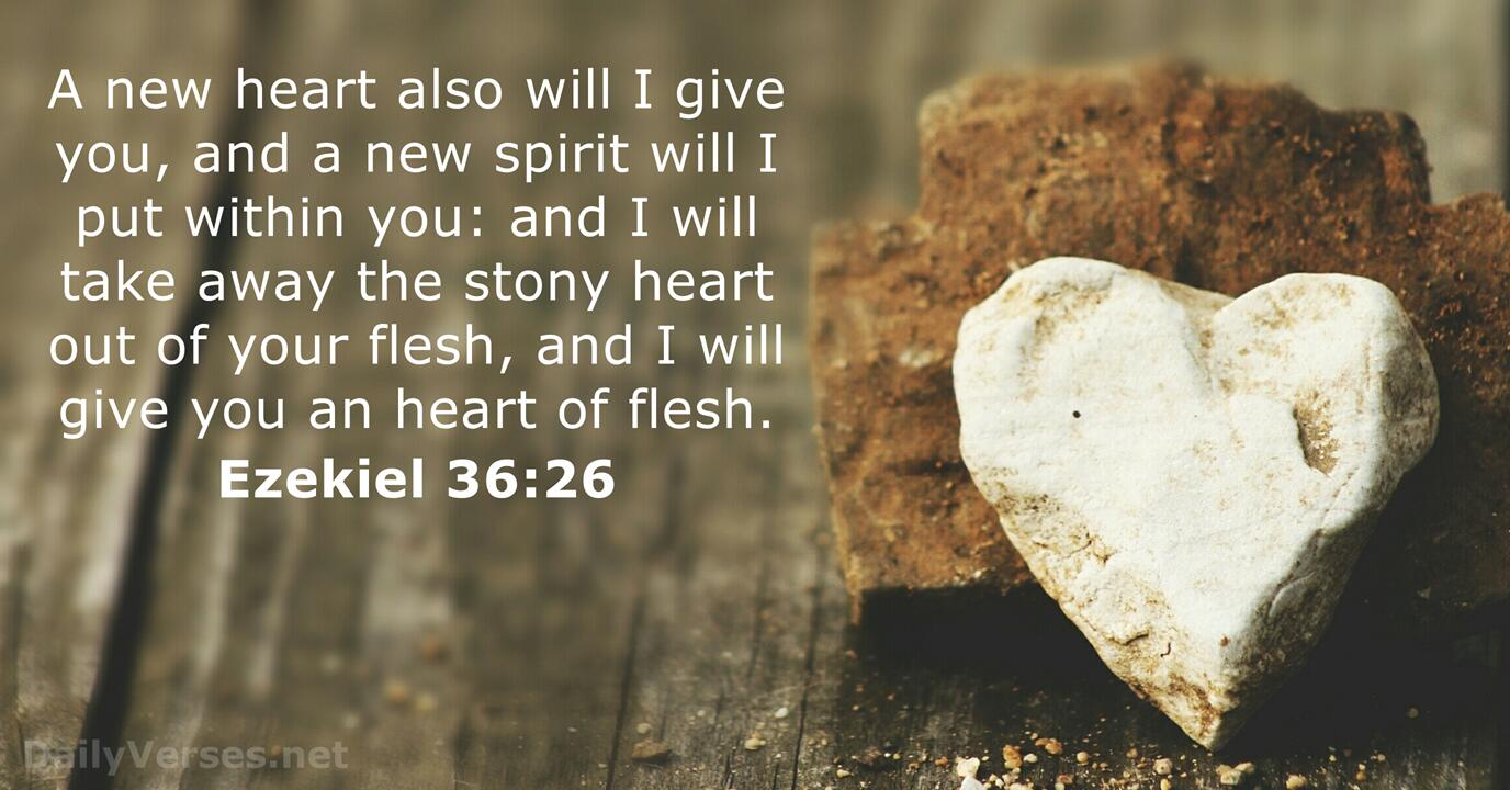 Ezekiel 36:26 - Bible verse (KJV) - DailyVerses.net