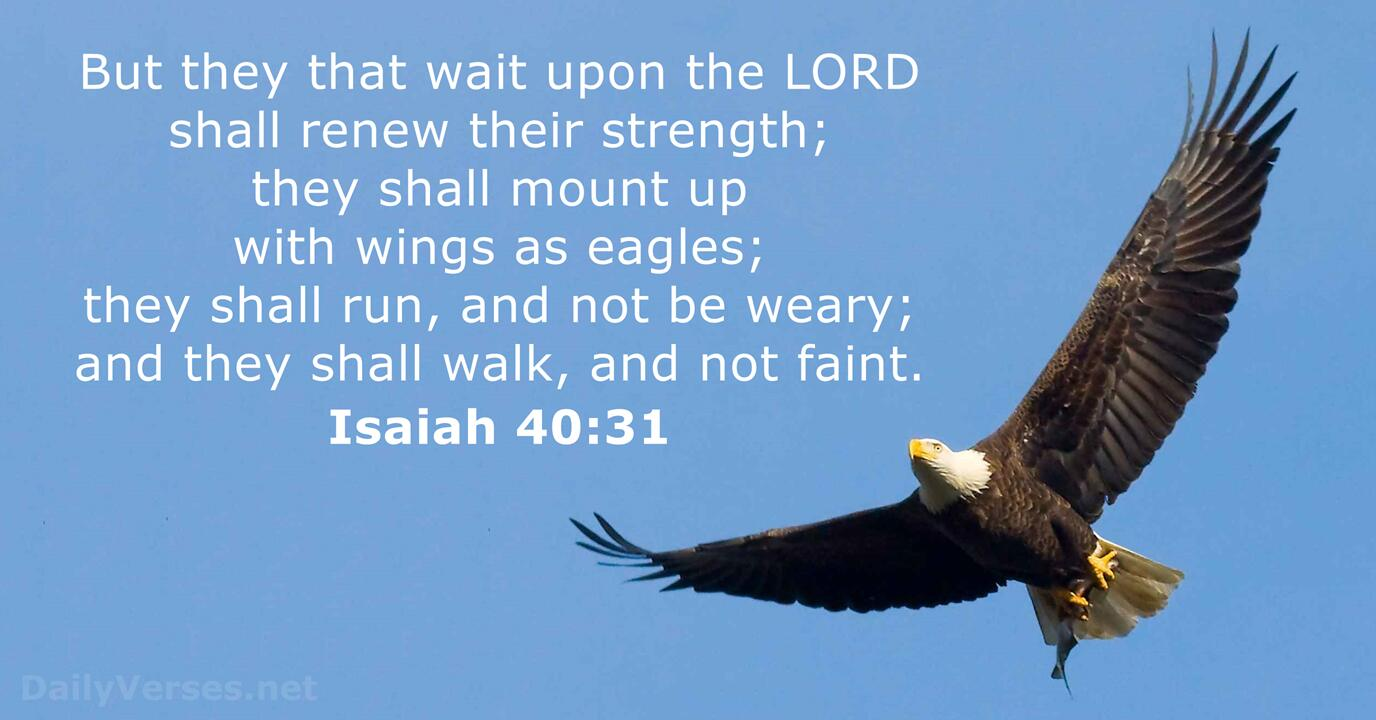 Isaiah 40:31 - KJV - Bible verse of the day - DailyVerses.net