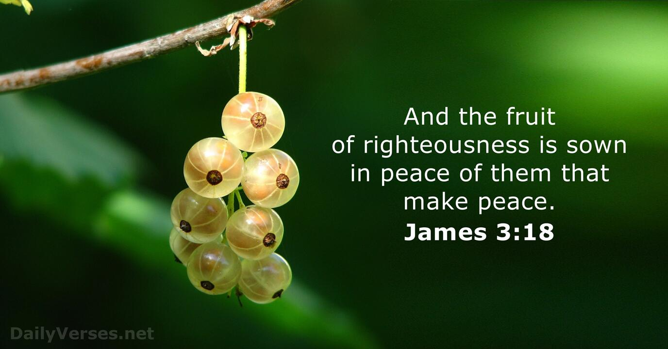 James 3:18 - KJV - Bible verse of the day - DailyVerses.net