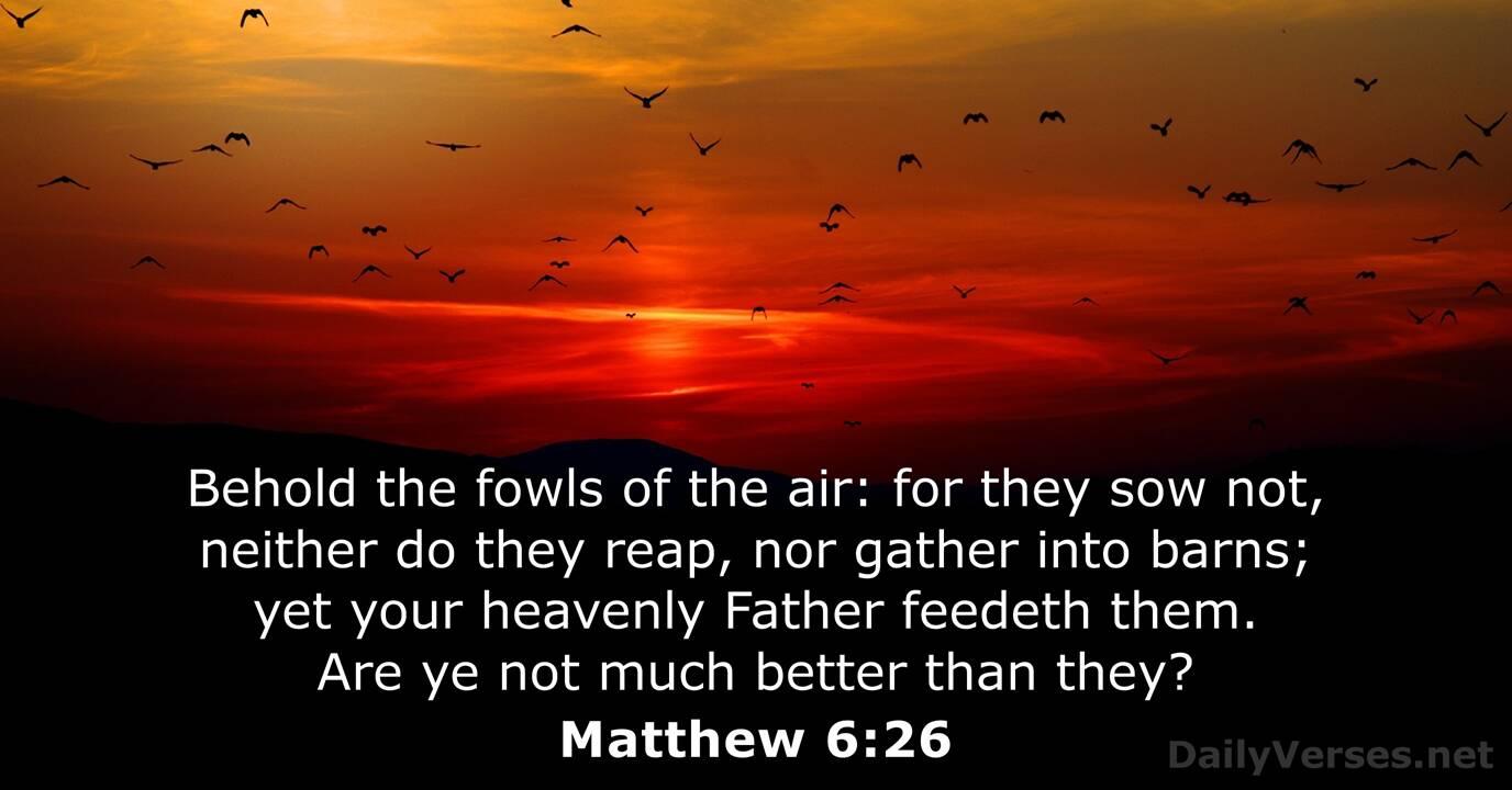 Matthew 6:26 - Bible verse (KJV) - DailyVerses.net