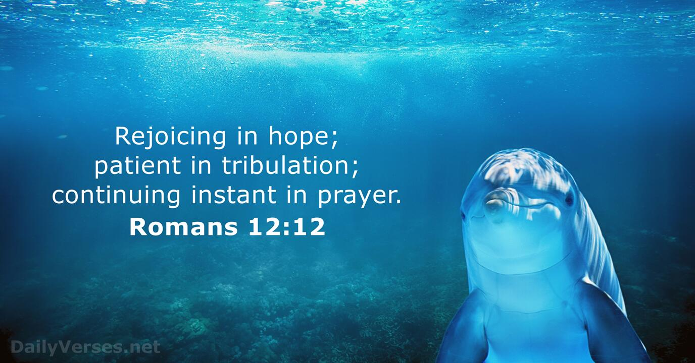 Romans 12:12 - KJV - Bible verse of the day - DailyVerses.net