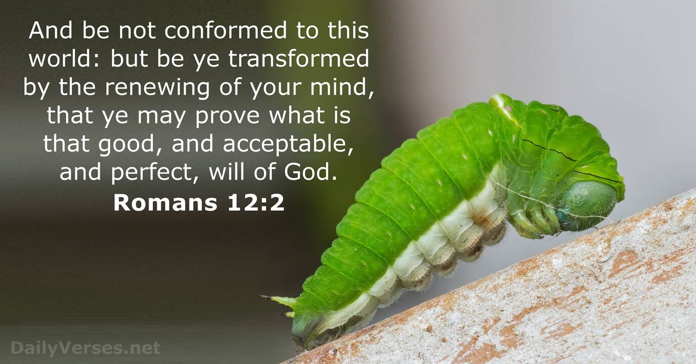 Romans 12:2 - Bible verse (KJV) - DailyVerses.net