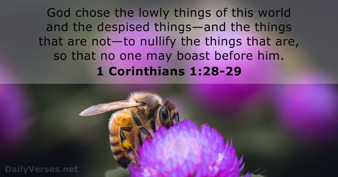 God chose the lowly things of this world and the despised things—and… 1 Corinthians 1:28-29