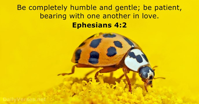 41 Bible Verses about Humility - DailyVerses net