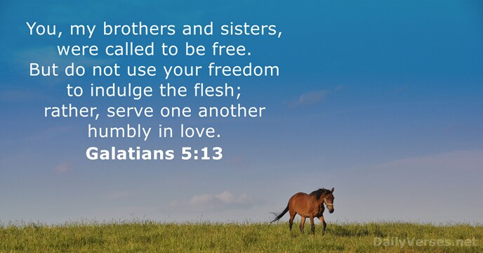 Galatians 5:13 - KJV - Bible verse of the day - DailyVerses net