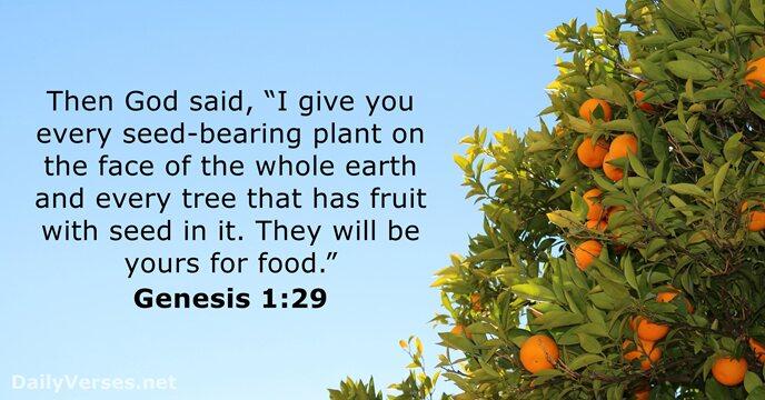 Genesis 1 29 King James Version Bible Verse Of The Day