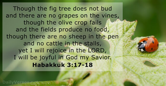 Though the fig tree does not bud and there are no grapes… Habakkuk 3:17-18