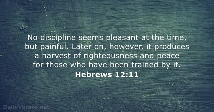hebrews 12:11