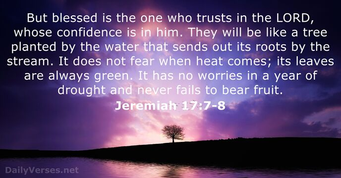 But blessed is the one who trusts in the Lord, whose confidence… Jeremiah 17:7-8