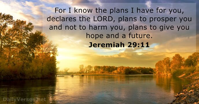 Image result for jeremiah 29 11 niv