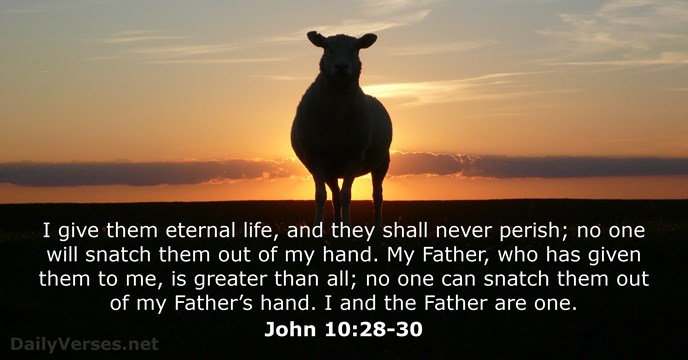 October 15, 2015 - Bible verse of the day - John 10:28-30