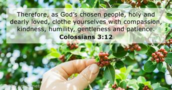 colossians 3:12