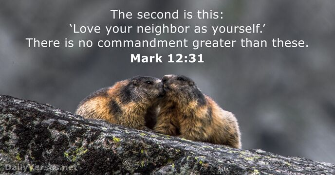48 Bible Verses about the Neighbor - DailyVerses net