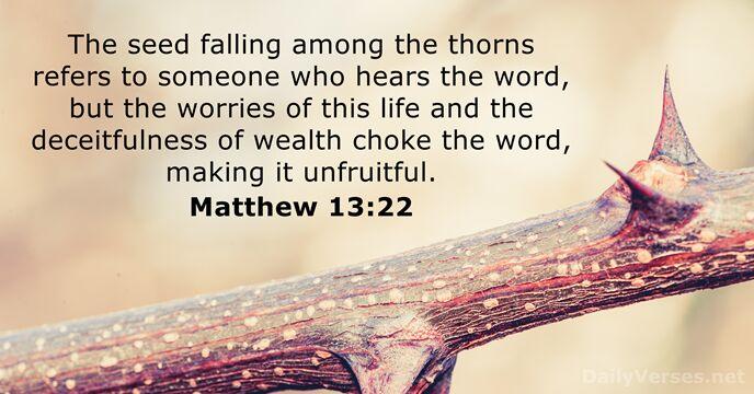 Matthew 13:22