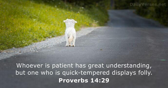 Proverbs 14:29