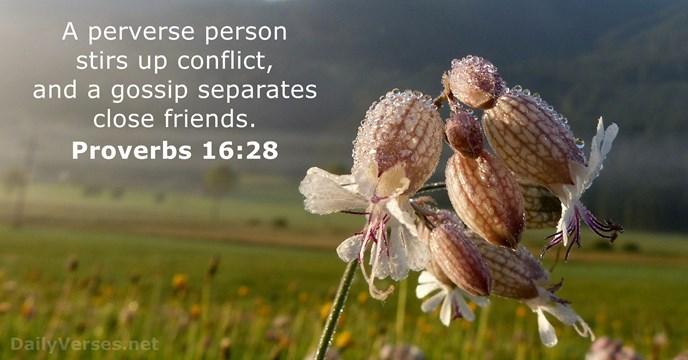 scripture about conflict