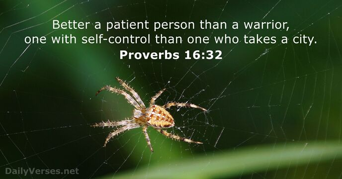 proverbs 16 32 - bible verse of the day