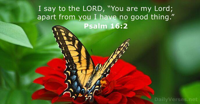 Psalms 16:2