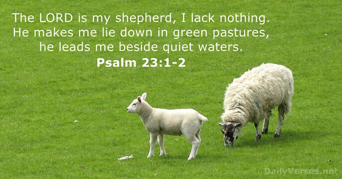 The Lord is my shepherd, I lack nothing. He makes me lie… Psalm 23:1-2
