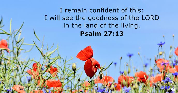 August 17, 2018 - Bible verse of the day - Psalm 27:13