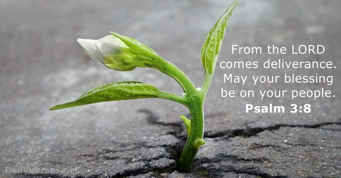 Psalm 3:8 - Bible verse of the day - DailyVerses net