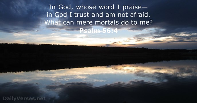 Psalm 56 4 Bible Verse Of The Day Dailyverses Net