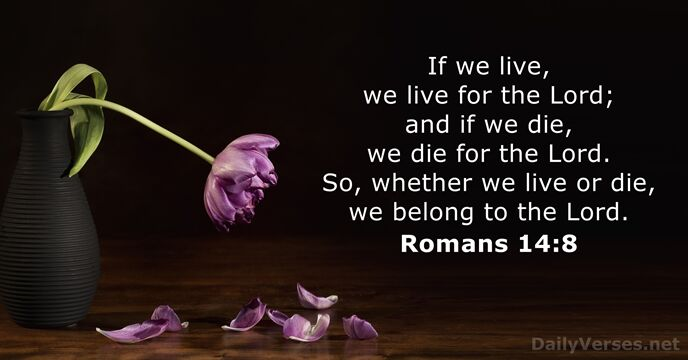 August 11, 2019 - Bible verse of the day - Romans 14:8 - DailyVerses net